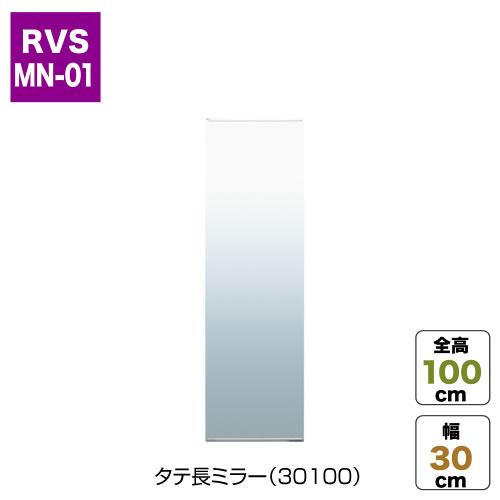 タテ長ミラー(30100)