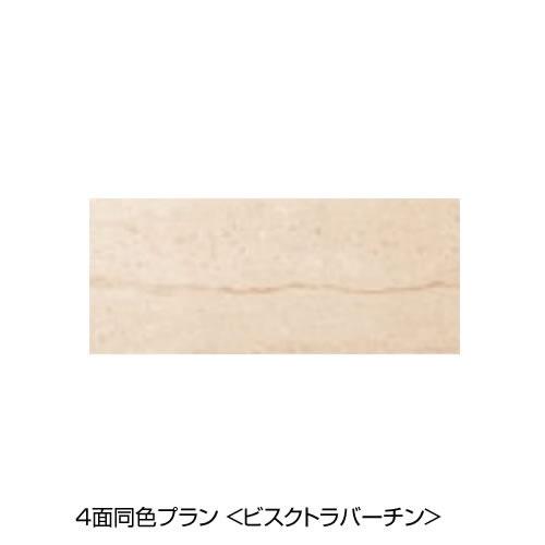 4面同色プラン 周辺パネル[ビスクトラバーチン]
